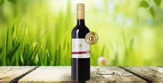 Pierre Zero, un vin sans alcool prônant le naturel